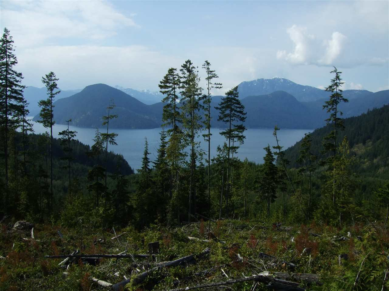 Photo 8: Photos: DL 5658 KILLAM BAY in Egmont: Pender Harbour Egmont Land for sale (Sunshine Coast)  : MLS®# R2402613