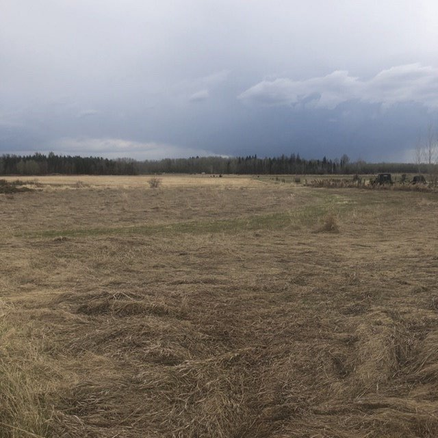 Main Photo: 167 3510 St Anne Trail: Rural Lac Ste. Anne County Rural Land/Vacant Lot for sale : MLS®# E4196507