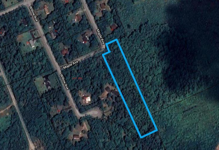 Main Photo: LOT Maple Avenue in Meadowvale: 400-Annapolis County Vacant Land for sale (Annapolis Valley)  : MLS®# 202002846