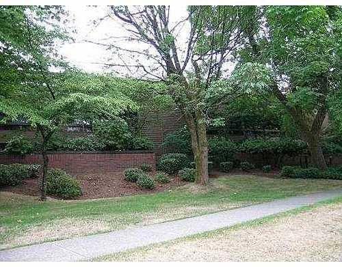 Main Photo: 307 3420 BELL AV in Sullivan Heights: Home for sale : MLS®# V607762