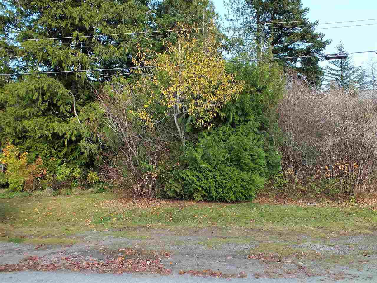 Main Photo: 411 7TH Avenue in Hope: Hope Center Land for sale : MLS®# R2418401