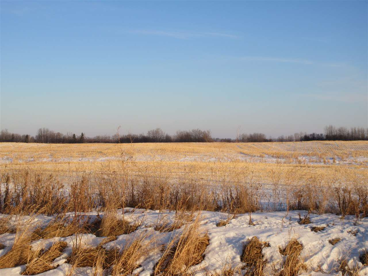 Main Photo: RR 214 Twp Rd 602: Rural Thorhild County Rural Land/Vacant Lot for sale : MLS®# E4224562