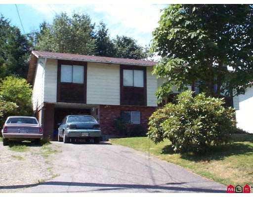 Main Photo: 2937 267B Street in Langley: Aldergrove Langley House for sale : MLS®# F2927937