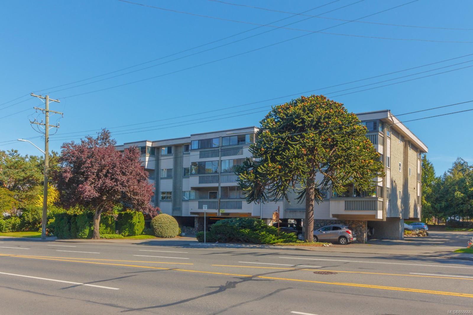 Main Photo: 202 1525 Hillside Ave in : Vi Oaklands Condo for sale (Victoria)  : MLS®# 860666