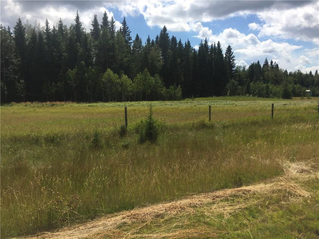 Main Photo: 111 TWP Road 325A: Rural Mountain View County Land for sale : MLS®# A1058359