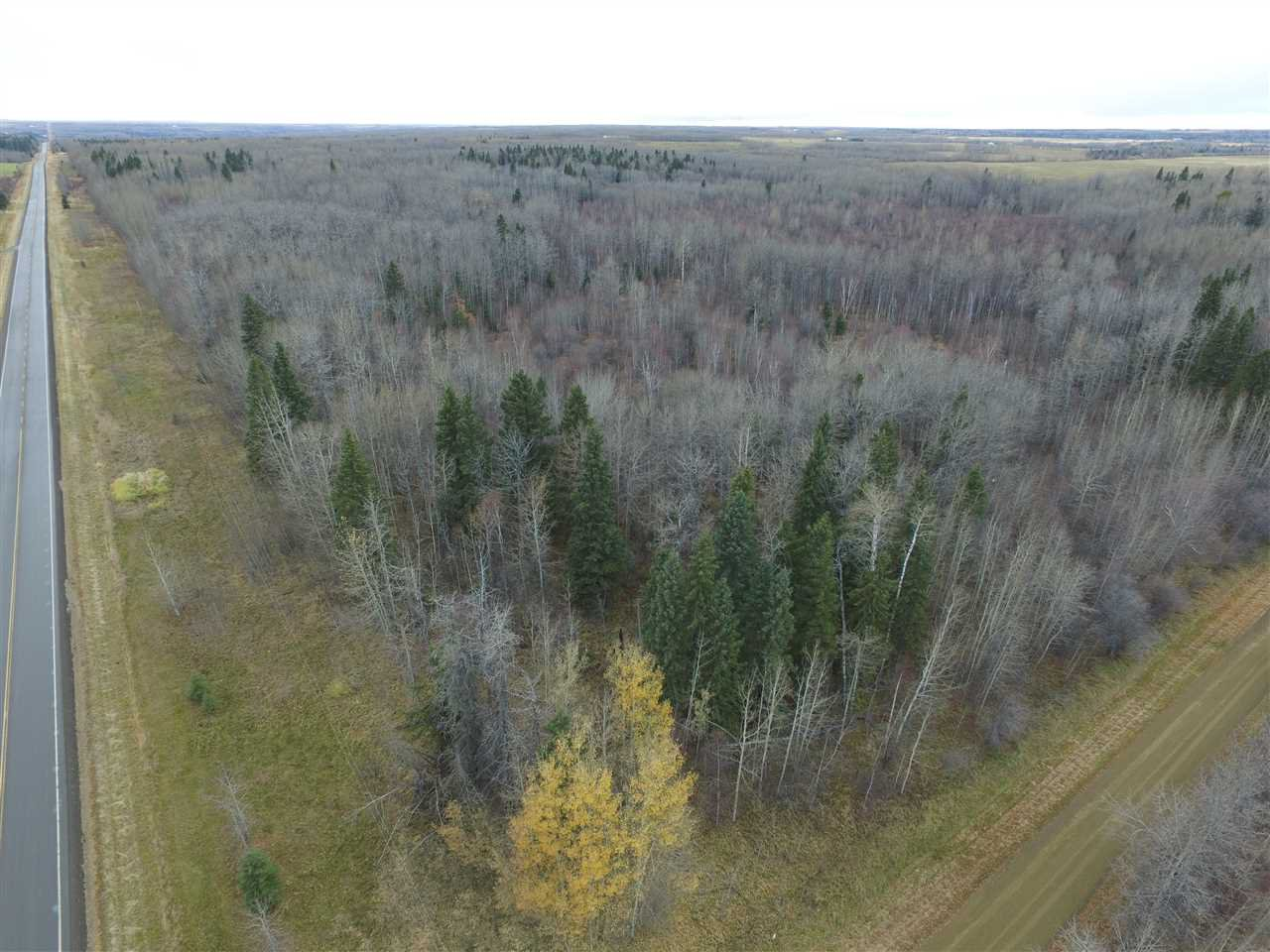 Main Photo: Twp Rd 470 Rge Rd 24: Rural Wetaskiwin County Rural Land/Vacant Lot for sale : MLS®# E4178439