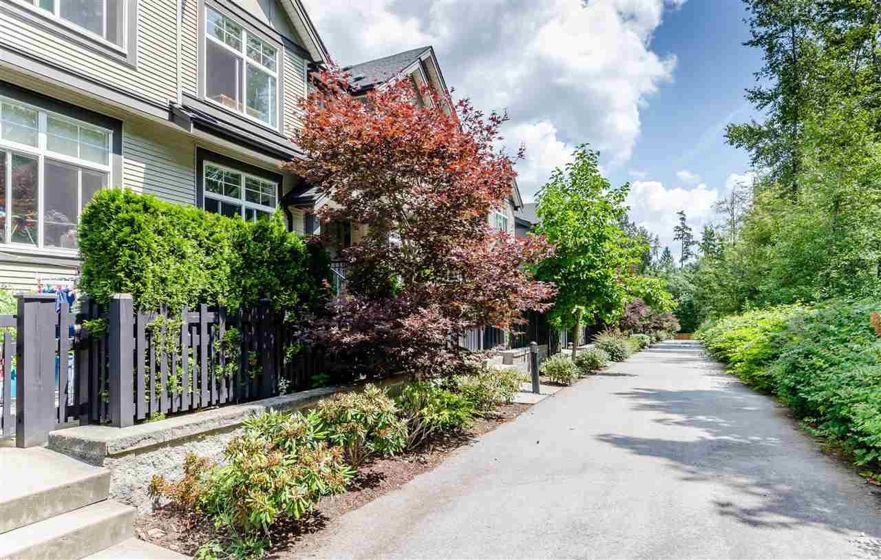 "Main Photo: 29 15788 104 Avenue in Surrey: Guildford Townhouse for sale in ""BLUETREE HOMES AT BISHOP CREEK"" (North Surrey)  : MLS®# R2390092"