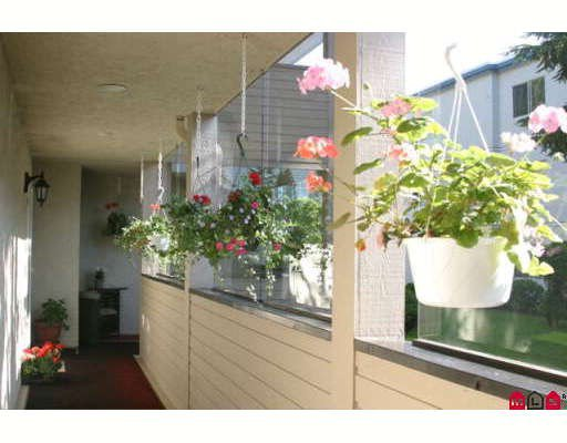 """Photo 3: Photos: 203 14957 THRIFT Avenue in White_Rock: White Rock Condo for sale in """"WHYTECLIFFE BY THE SEA"""" (South Surrey White Rock)  : MLS®# F2906162"""