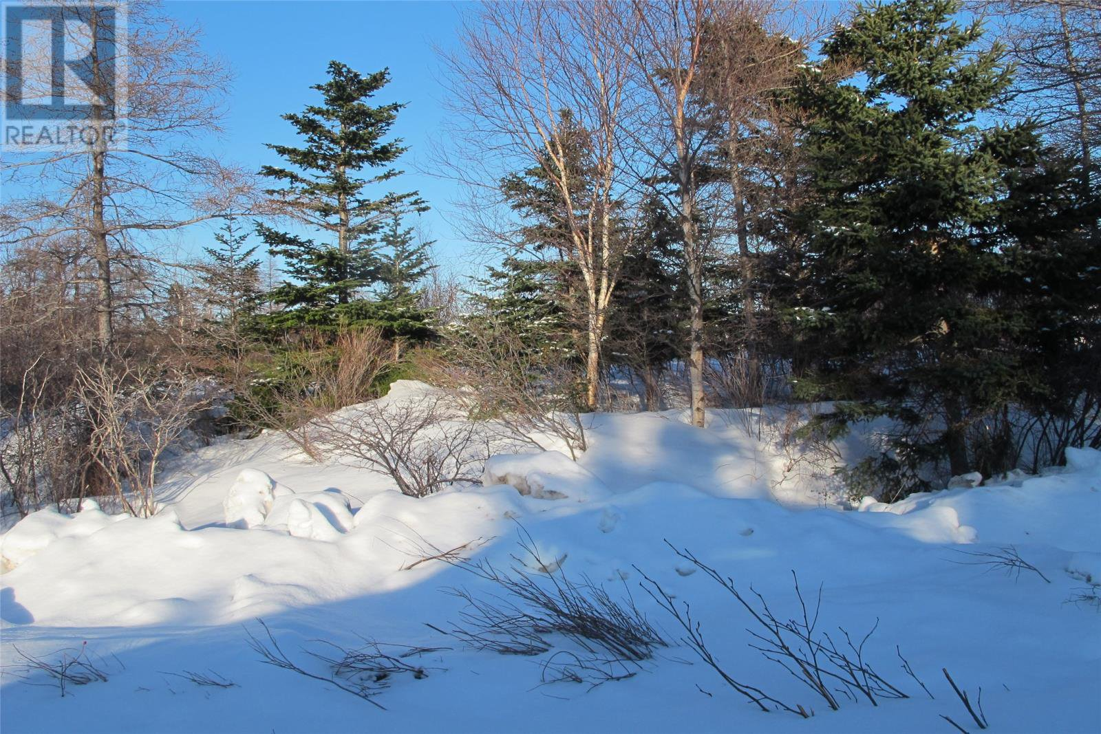 Main Photo: 39 Green Acres in Holyrood: Vacant Land for sale : MLS®# 1210024