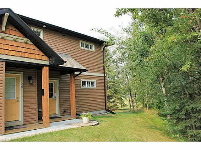 Main Photo: 671 SILVER BERRY Road in Edmonton: Zone 30 Carriage for sale : MLS®# E4173334