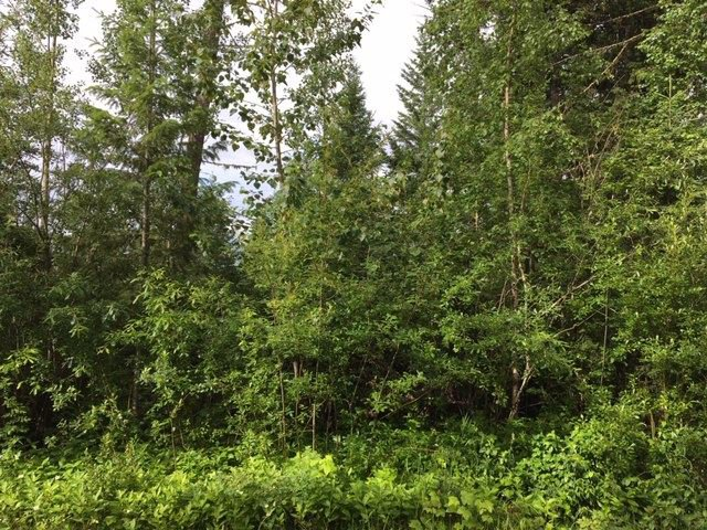 Photo 2: Photos: LOT A VALHALLA Road in Quesnel: Quesnel - Town Land for sale (Quesnel (Zone 28))  : MLS®# R2473761