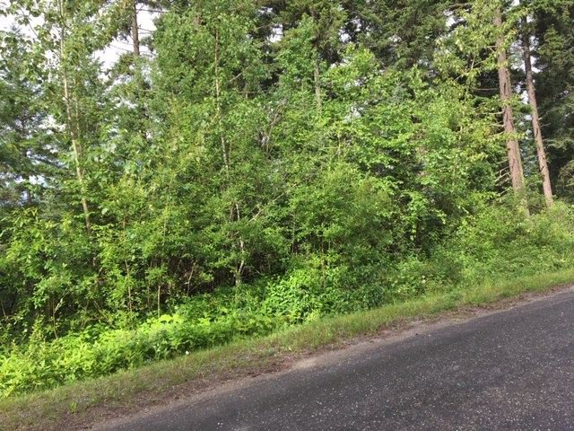 Photo 5: Photos: LOT A VALHALLA Road in Quesnel: Quesnel - Town Land for sale (Quesnel (Zone 28))  : MLS®# R2473761