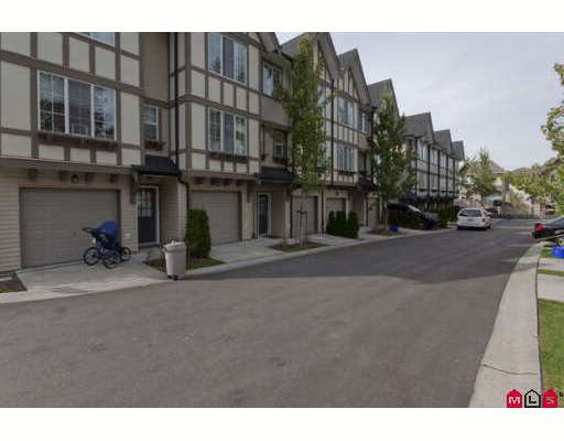 "Main Photo: 18 20875 80TH Avenue in Langley: Willoughby Heights Townhouse for sale in ""PEPPERWOOD"" : MLS®# F2920598"