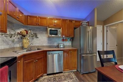 Main Photo: 408 5340 199 Street in Edmonton: Zone 58 Condo for sale : MLS®# E4178199