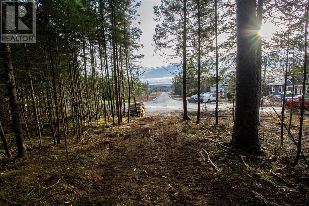 Photo 11: Photos: Lot 15-02 Meadow Lane in Sackville: Vacant Land for sale : MLS®# M127088