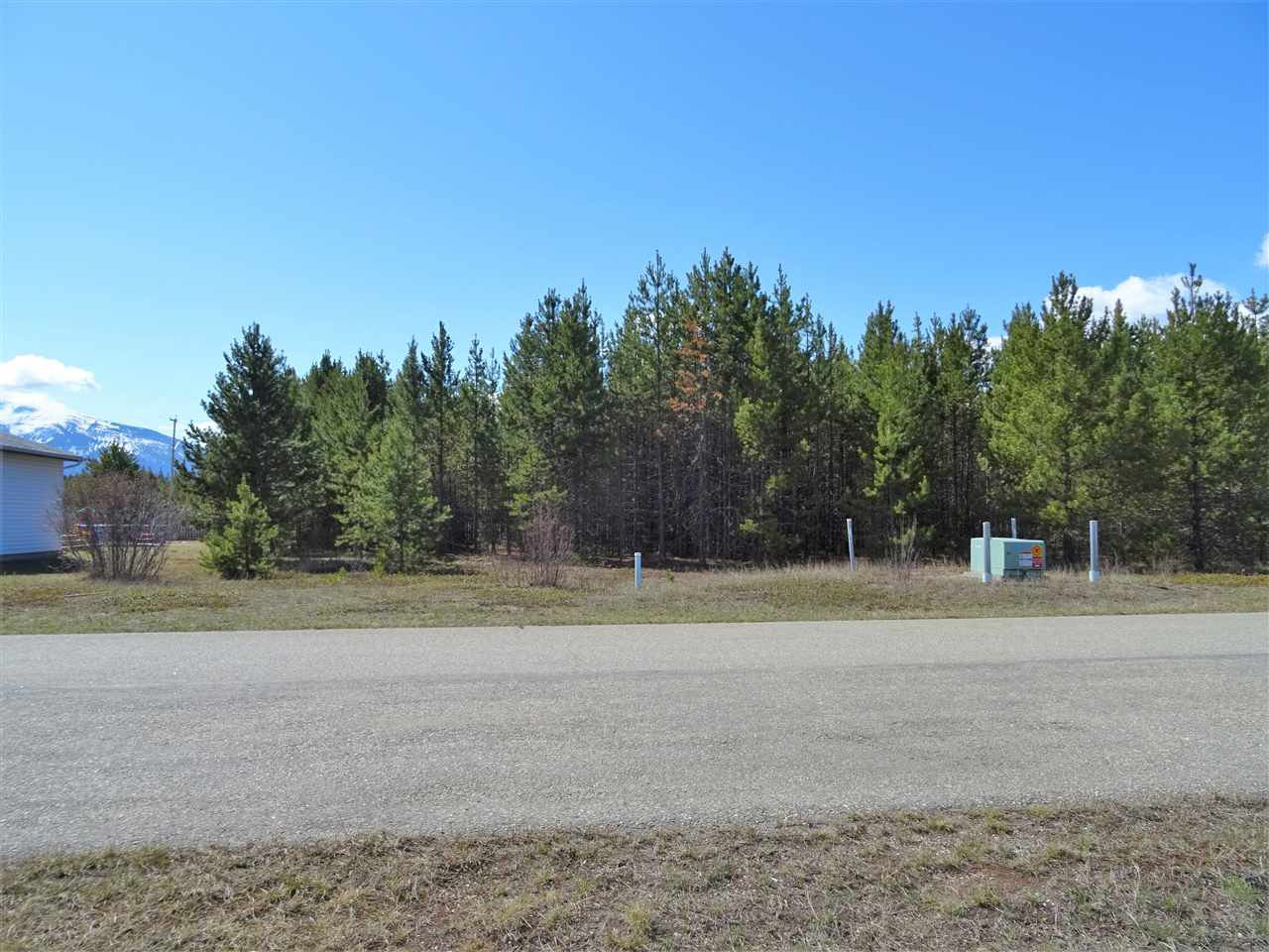 Main Photo: 1463 8TH Place in Valemount: Valemount - Town Land for sale (Robson Valley (Zone 81))  : MLS®# R2428430