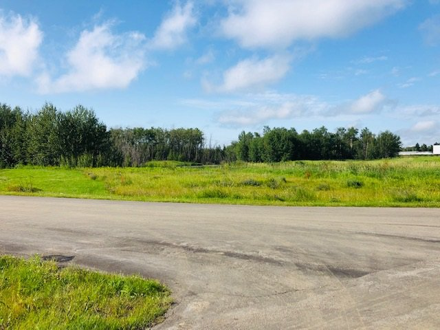 Main Photo: 25 51565 RGE RD 223: Rural Strathcona County Rural Land/Vacant Lot for sale : MLS®# E4168446