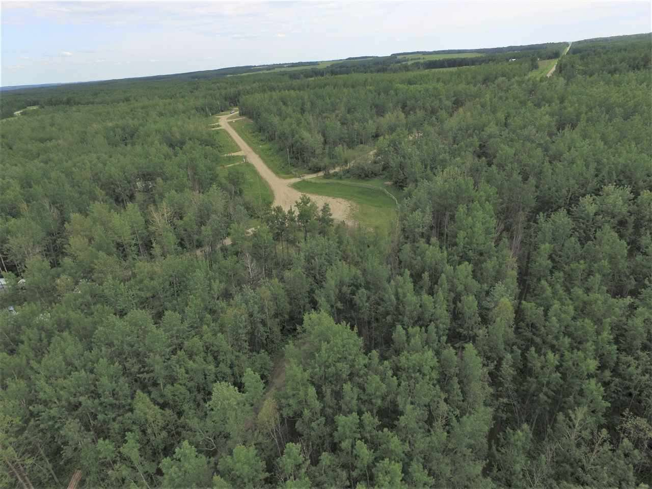 Photo 7: Photos: 11 13070 TWP RD 464: Rural Wetaskiwin County Rural Land/Vacant Lot for sale : MLS®# E4169948