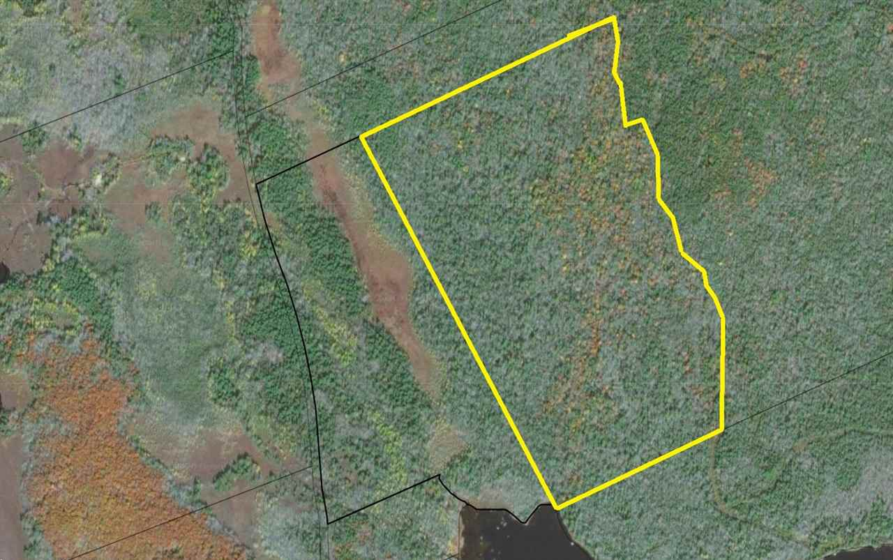 Main Photo: Lot Pells Road in Lake George: 407-Shelburne County Vacant Land for sale (South Shore)  : MLS®# 201927363