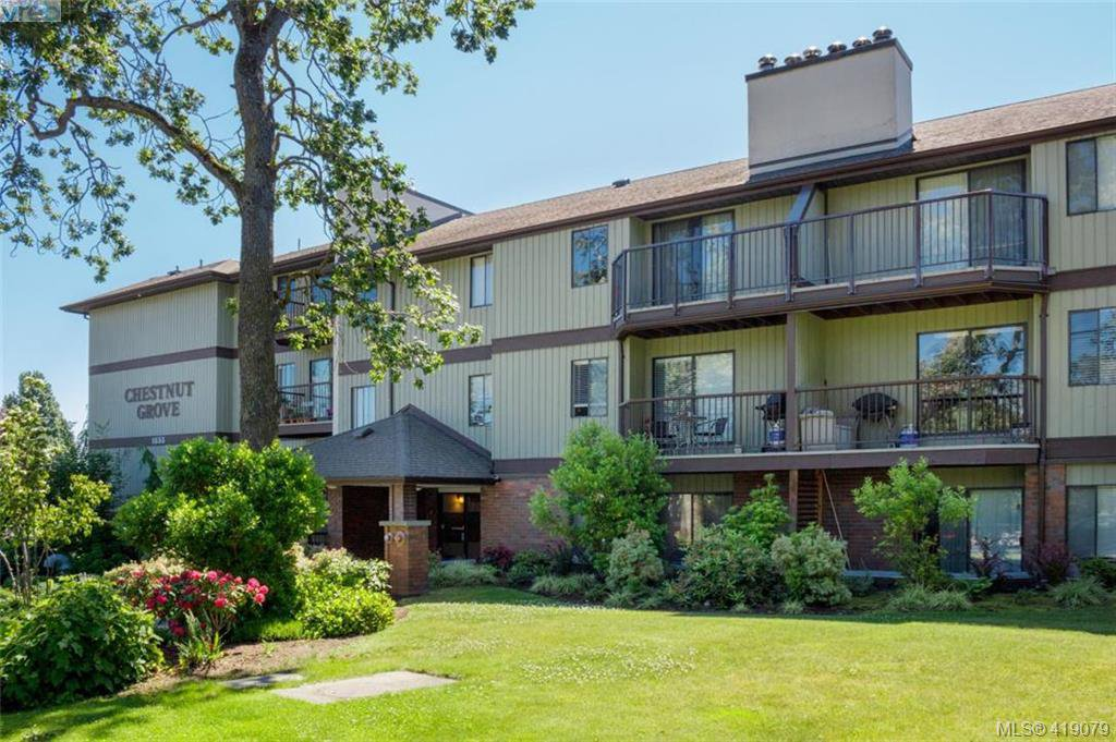 Main Photo: 105 1655 Begbie Street in VICTORIA: Vi Fernwood Condo Apartment for sale (Victoria)  : MLS®# 419079