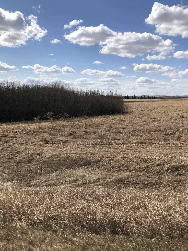 Main Photo: Highway 36: Brosseau Vacant Lot for sale : MLS®# E4196146