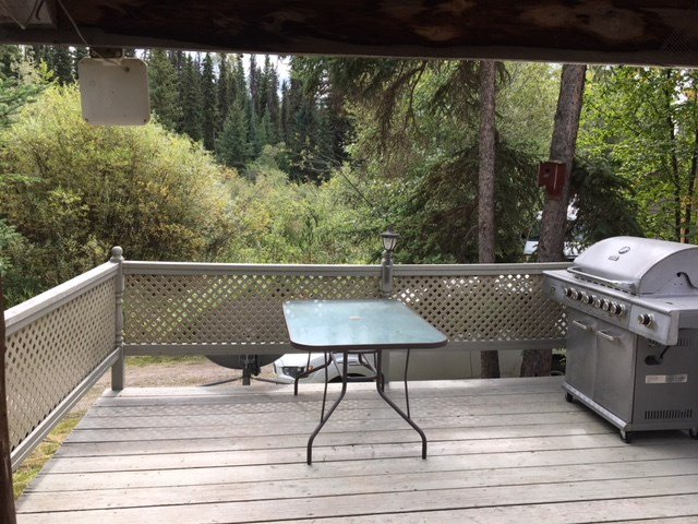 "Photo 11: Photos: 4371 BLACKWATER Road in Quesnel: Bouchie Lake House for sale in ""BLACKWATER - NAZKO"" (Quesnel (Zone 28))  : MLS®# R2402787"