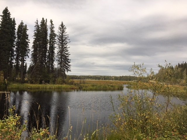 "Photo 1: Photos: 4371 BLACKWATER Road in Quesnel: Bouchie Lake House for sale in ""BLACKWATER - NAZKO"" (Quesnel (Zone 28))  : MLS®# R2402787"