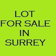 Main Photo: 12028 99TH Avenue in Surrey: Cedar Hills Land for sale (North Surrey)  : MLS®# F1100653