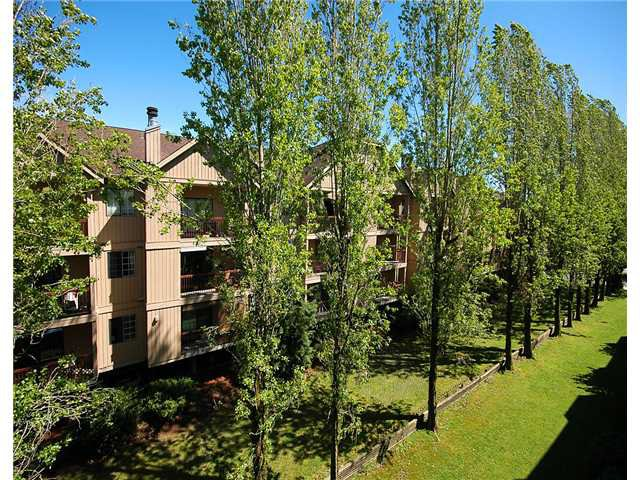 "Photo 9: Photos: 309 8451 WESTMINSTER Highway in Richmond: Brighouse Condo for sale in ""ARBORETUM 2"" : MLS®# V817113"