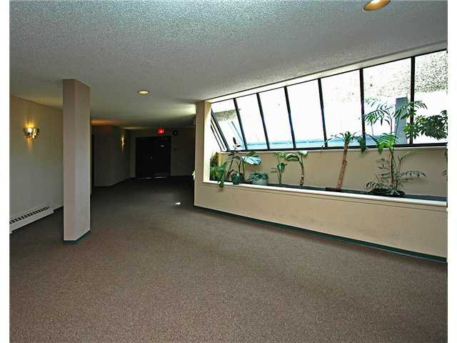 "Photo 10: Photos: 309 8451 WESTMINSTER Highway in Richmond: Brighouse Condo for sale in ""ARBORETUM 2"" : MLS®# V817113"