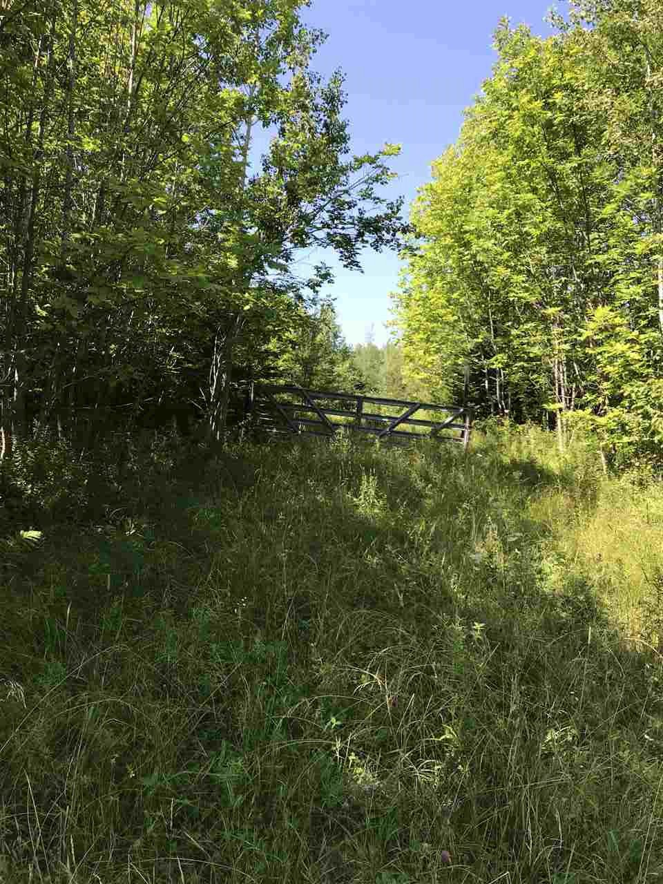 Photo 3: Photos: Hwy 215 Highway in South Maitland: 105-East Hants/Colchester West Vacant Land for sale (Halifax-Dartmouth)  : MLS®# 201919771