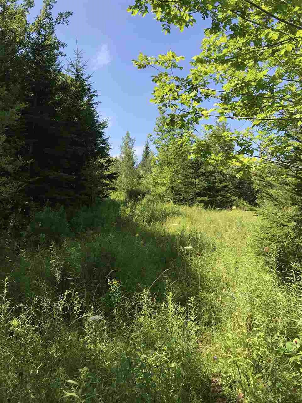 Photo 5: Photos: Hwy 215 Highway in South Maitland: 105-East Hants/Colchester West Vacant Land for sale (Halifax-Dartmouth)  : MLS®# 201919771
