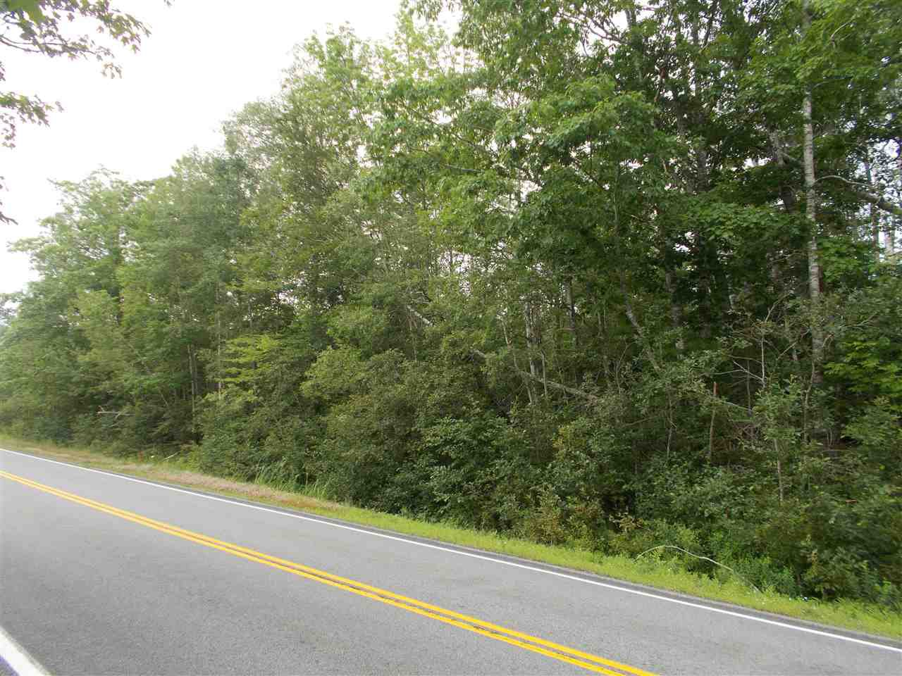 Photo 2: Photos: Hwy 215 Highway in South Maitland: 105-East Hants/Colchester West Vacant Land for sale (Halifax-Dartmouth)  : MLS®# 201919771