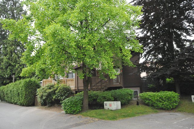 """Main Photo: 5 302 AFTON Lane in Port Moody: North Shore Pt Moody Townhouse for sale in """"HIGHLAND PARK"""" : MLS®# V839060"""
