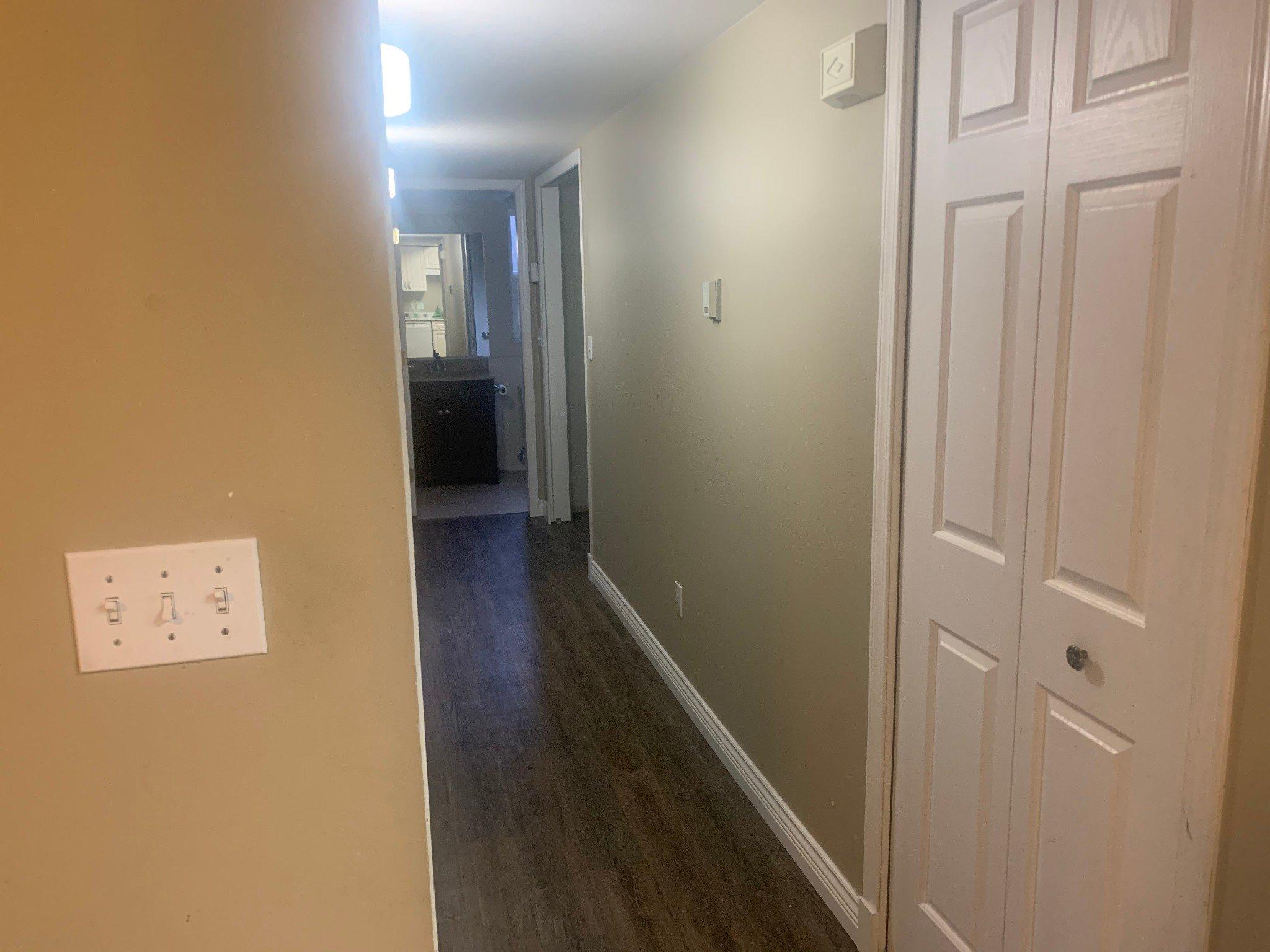 Photo 11: Photos: BSMT 1686 McKenzie Rd. in Abbotsford: Poplar Condo for rent