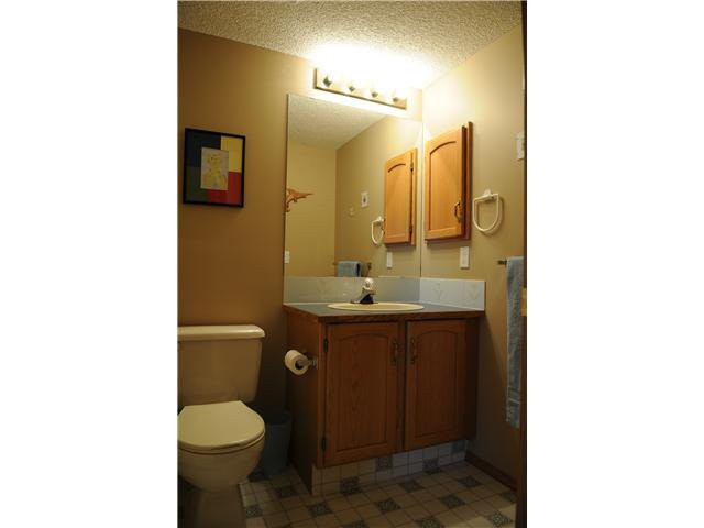 Photo 13: Photos: 38 ERIN LINK SE in CALGARY: Erinwoods Residential Detached Single Family for sale (Calgary)  : MLS®# C3497032