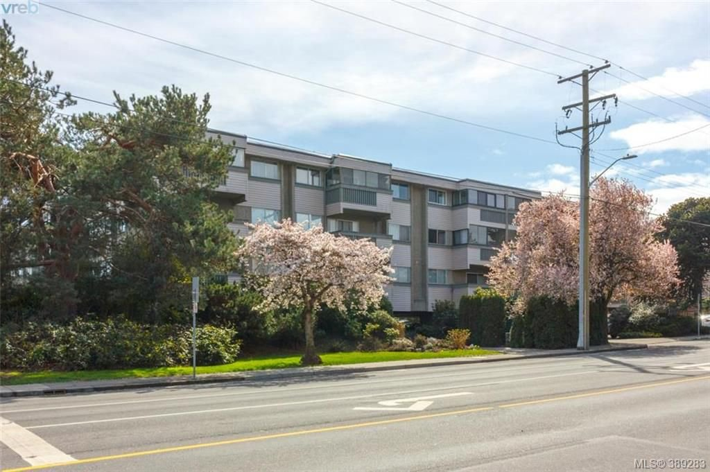 Main Photo: 306 1525 Hillside Avenue in VICTORIA: Vi Oaklands Condo Apartment for sale (Victoria)  : MLS®# 389283