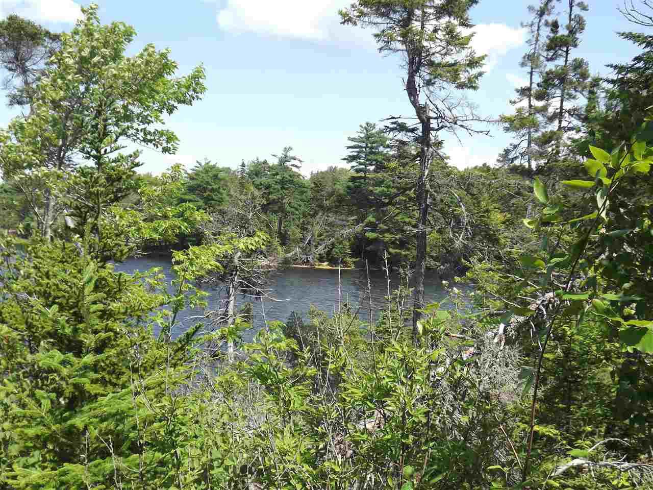 Photo 3: Photos: Trout Brook Road in Albert Bridge: 210-Marion Bridge Vacant Land for sale (Cape Breton)  : MLS®# 201919549