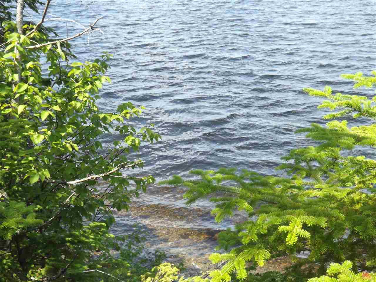 Photo 6: Photos: Trout Brook Road in Albert Bridge: 210-Marion Bridge Vacant Land for sale (Cape Breton)  : MLS®# 201919549