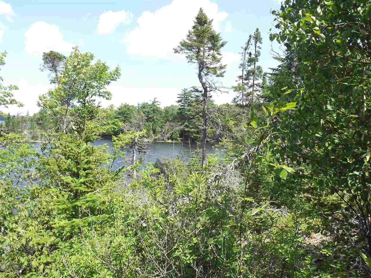 Photo 4: Photos: Trout Brook Road in Albert Bridge: 210-Marion Bridge Vacant Land for sale (Cape Breton)  : MLS®# 201919549