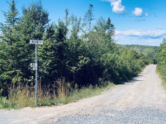 Main Photo: Lot 2D 38 Allie Lane in Whites Lake: 40-Timberlea, Prospect, St. Margaret`S Bay Vacant Land for sale (Halifax-Dartmouth)  : MLS®# 202017988