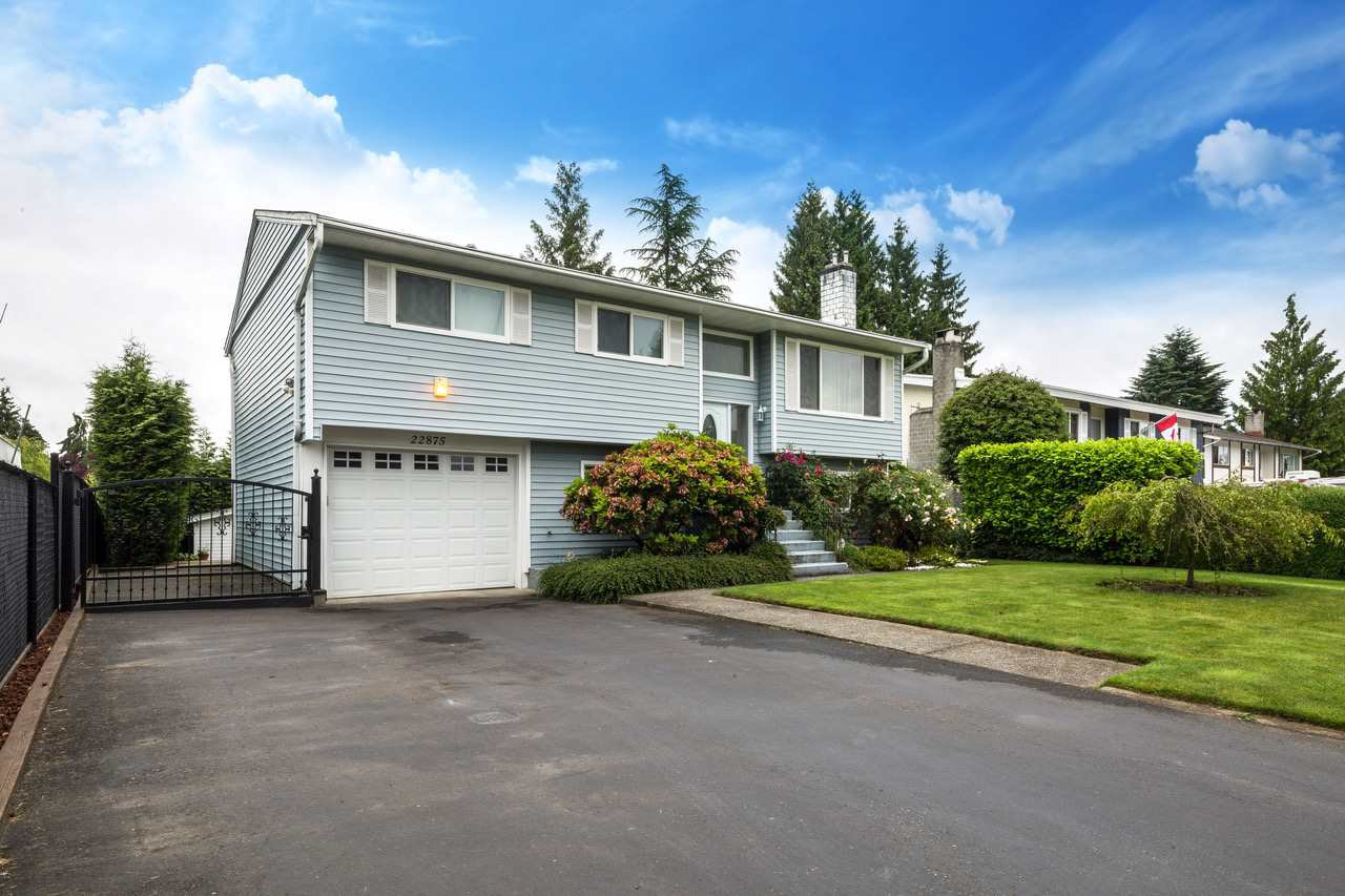 Main Photo: 22875 STOREY Avenue in Maple Ridge: East Central House for sale : MLS®# R2179109