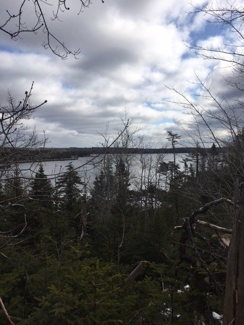 Main Photo: Lot 26a 83 Bayview Crescent in Prospect: 40-Timberlea, Prospect, St. Margaret`S Bay Vacant Land for sale (Halifax-Dartmouth)  : MLS®# 202003044