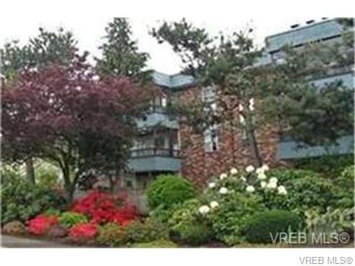 Main Photo: 203 1725 Cedar Hill Cross Rd in VICTORIA: SE Mt Tolmie Condo for sale (Saanich East)  : MLS®# 704662