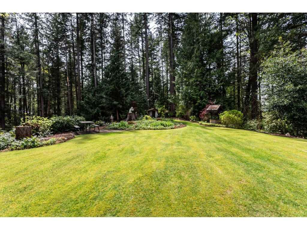 Photo 18: Photos: 23646 55A Avenue in Langley: Salmon River House for sale : MLS®# R2361499