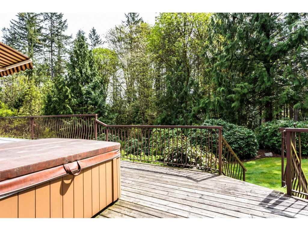 Photo 20: Photos: 23646 55A Avenue in Langley: Salmon River House for sale : MLS®# R2361499