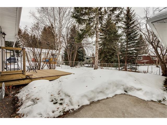Photo 33: Photos: 5008 VANSTONE Crescent NW in Calgary: Varsity House for sale : MLS®# C4094645