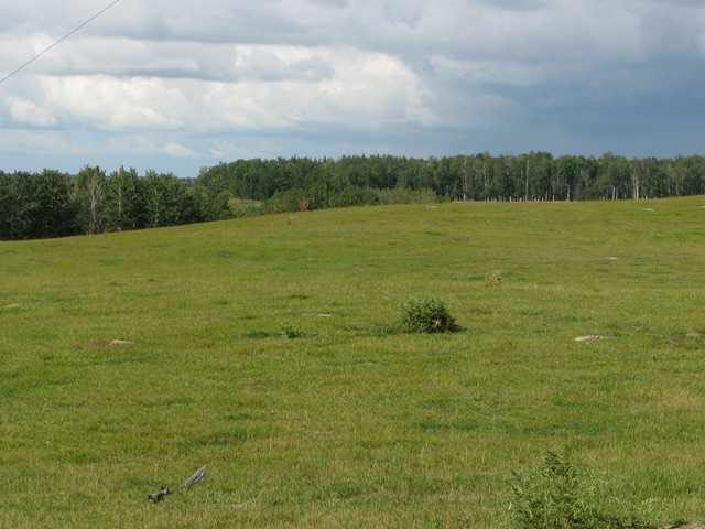 Main Photo: 1450A TWP ROAD 534: Rural Parkland County Rural Land/Vacant Lot for sale : MLS®# E4135635