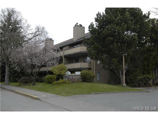 Main Photo: 202 3215 Alder St in VICTORIA: SE Quadra Condo for sale (Saanich East)  : MLS®# 728230