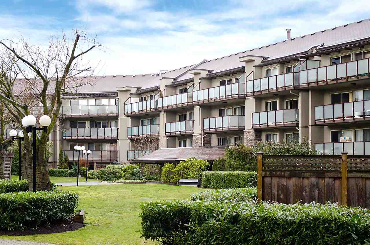 """Photo 14: Photos: 121 4373 HALIFAX Street in Burnaby: Brentwood Park Condo for sale in """"BRENT GARDENS"""" (Burnaby North)  : MLS®# R2128661"""
